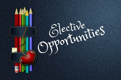 Click here to Select your Electives for Next School Year!